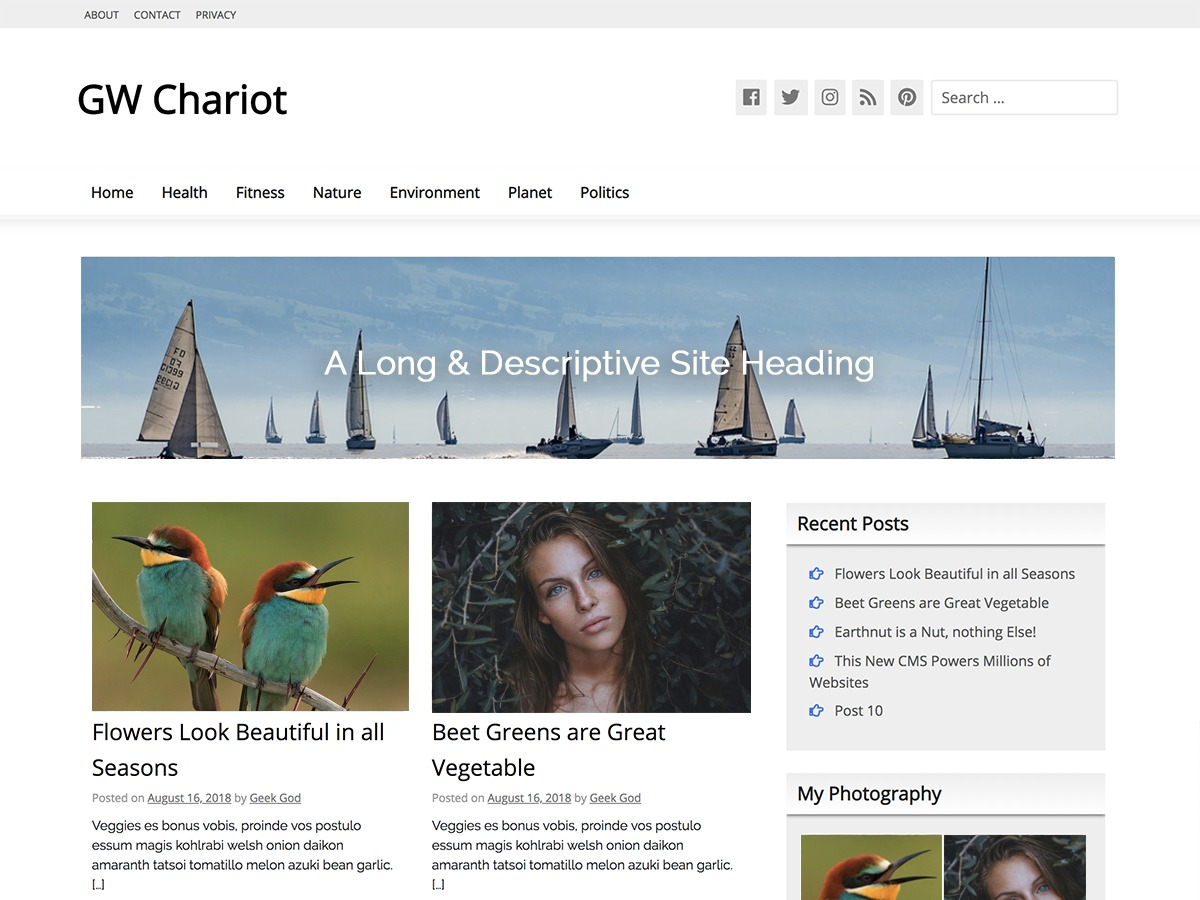 GW Chariot WordPress theme image