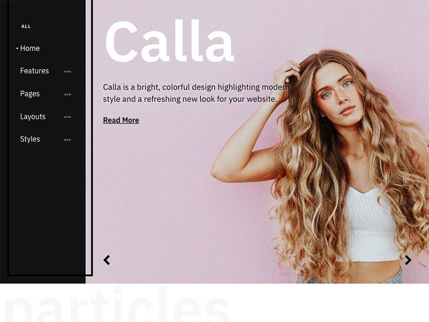 Theme WordPress Calla