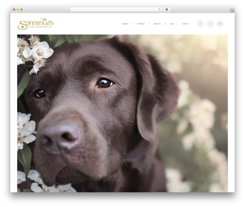 Bridge WordPress template for photographers - sonnentier-photography.de