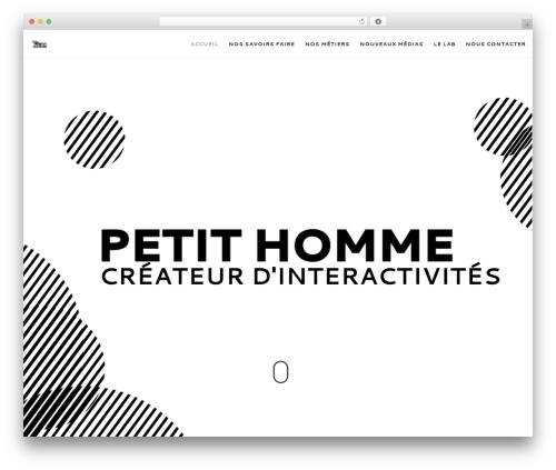 WordPress theme Movedo - petithomme.fr