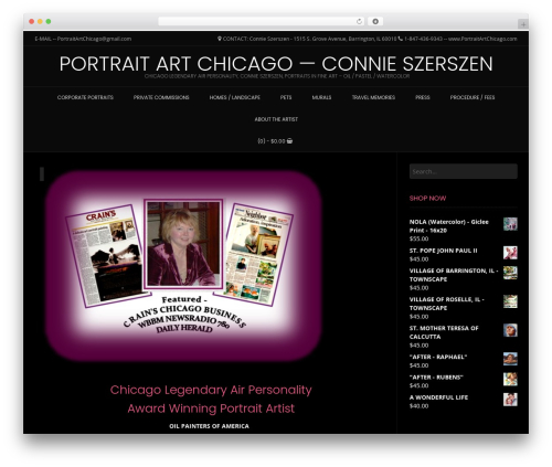 Conica WP template - portraitartchicago.com