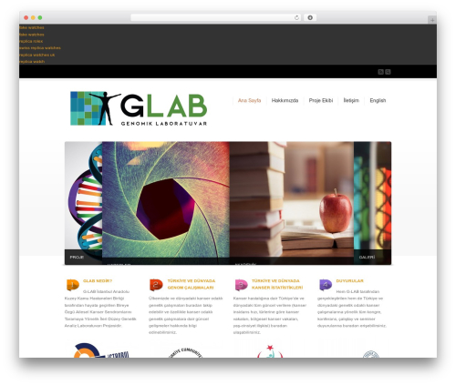 Corona WordPress theme - glab.ist