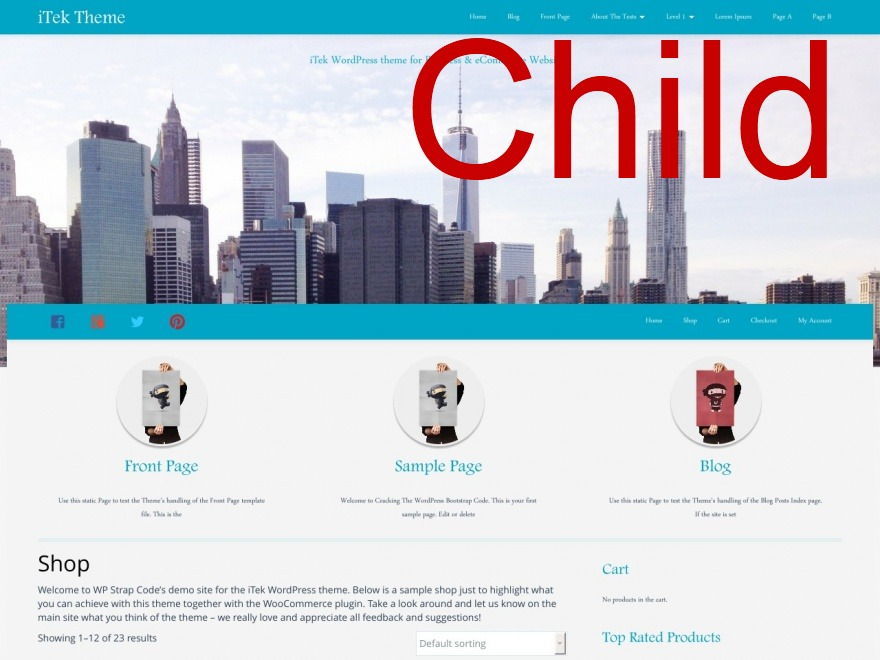 Template WordPress iTek Basic Child