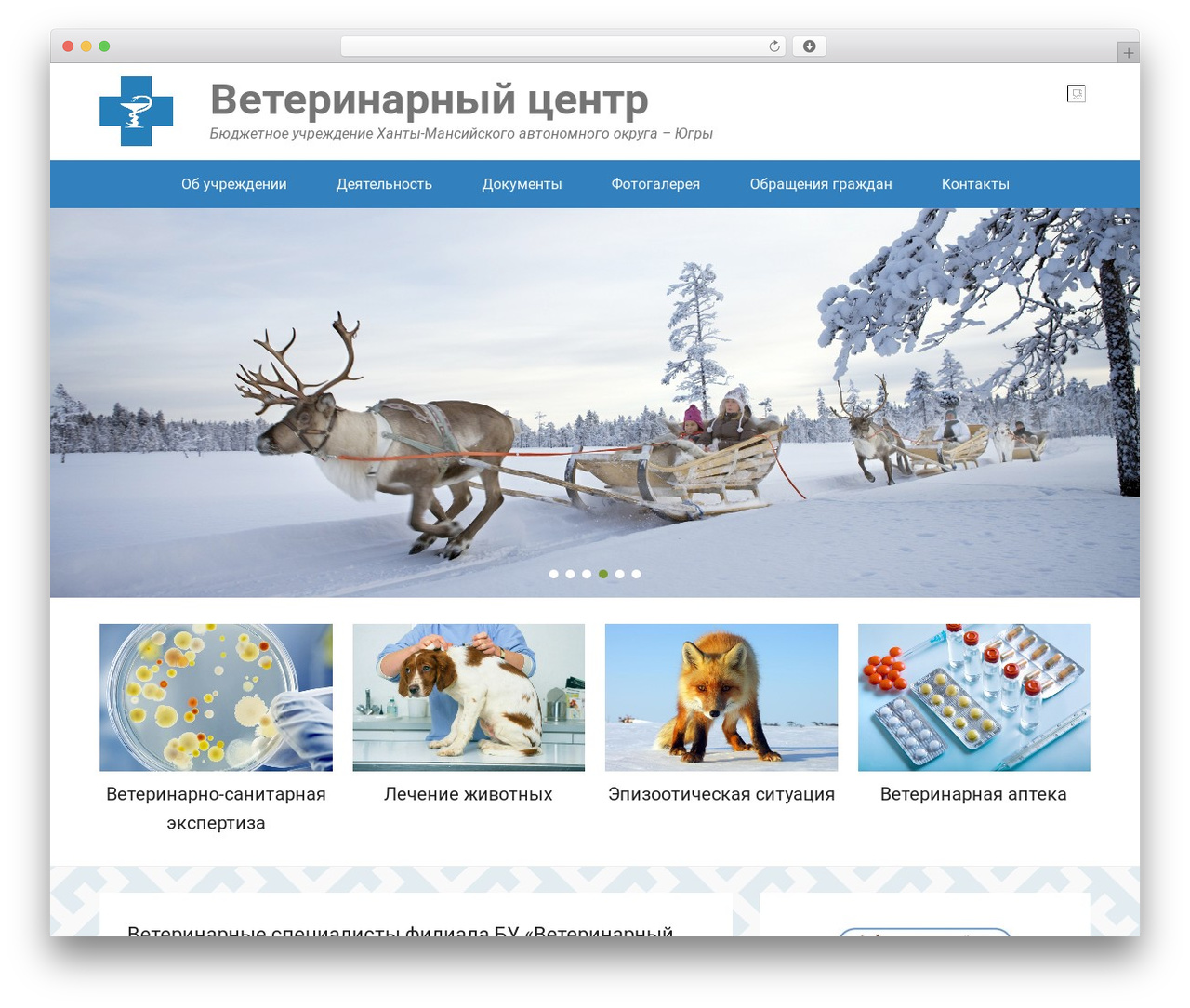 Adventurous free WordPress theme - ugravet.ru