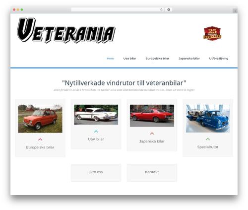 BusiProf Pro theme WordPress - veterania.se