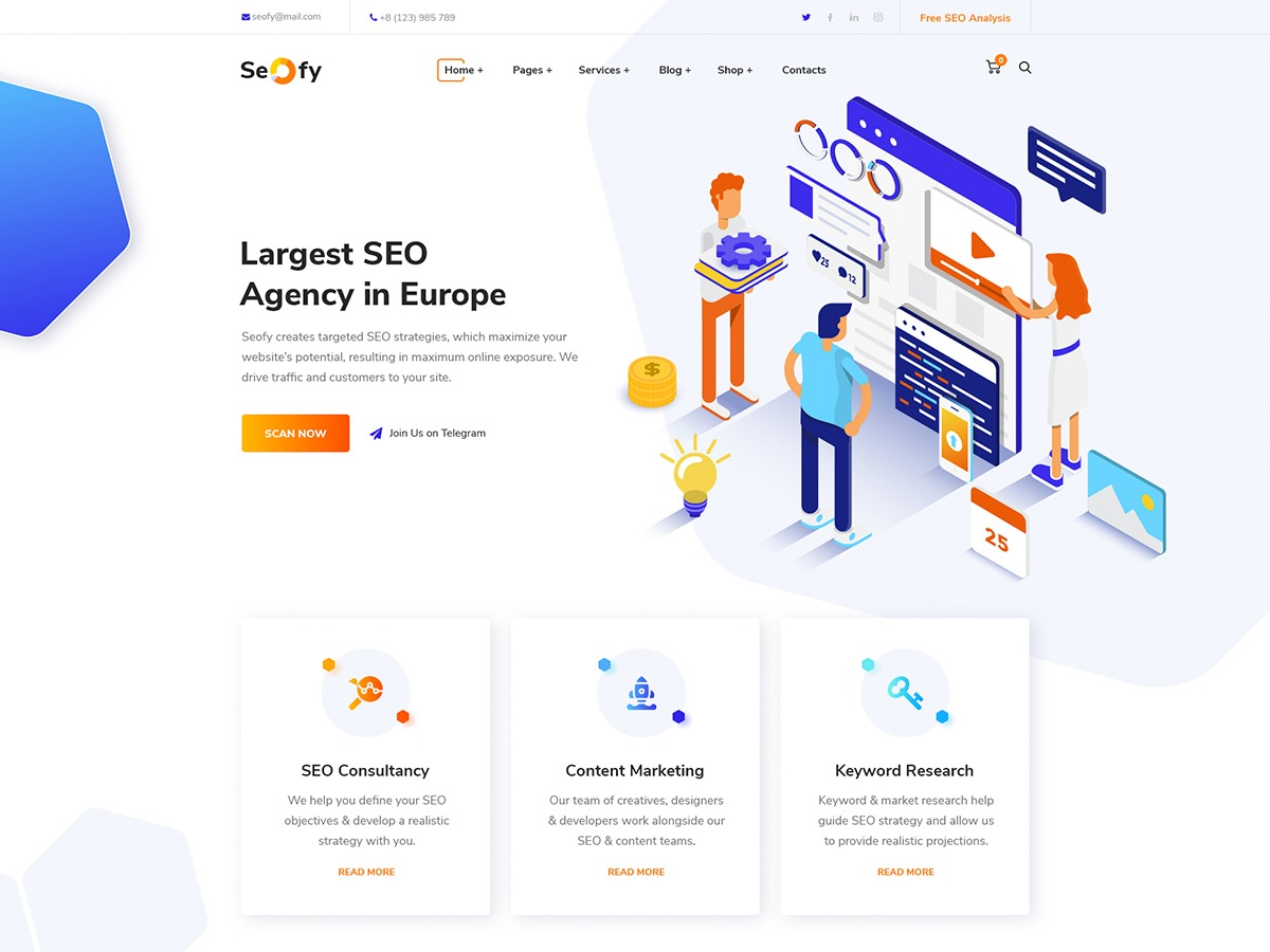 Theme WordPress Seofy