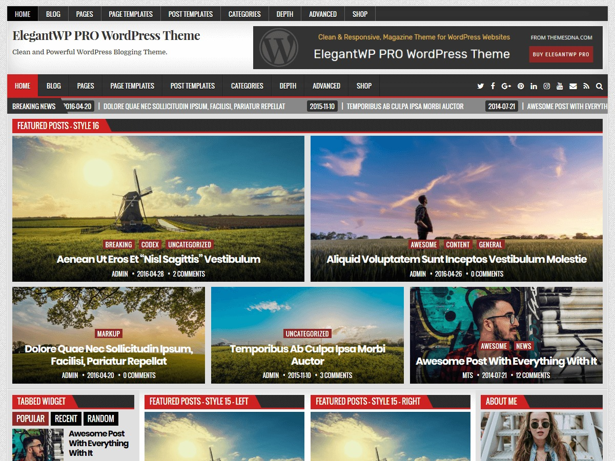 ElegantWP PRO WordPress blog theme