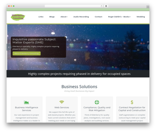 BusiProf Pro WordPress template - elderberryconsulting.com