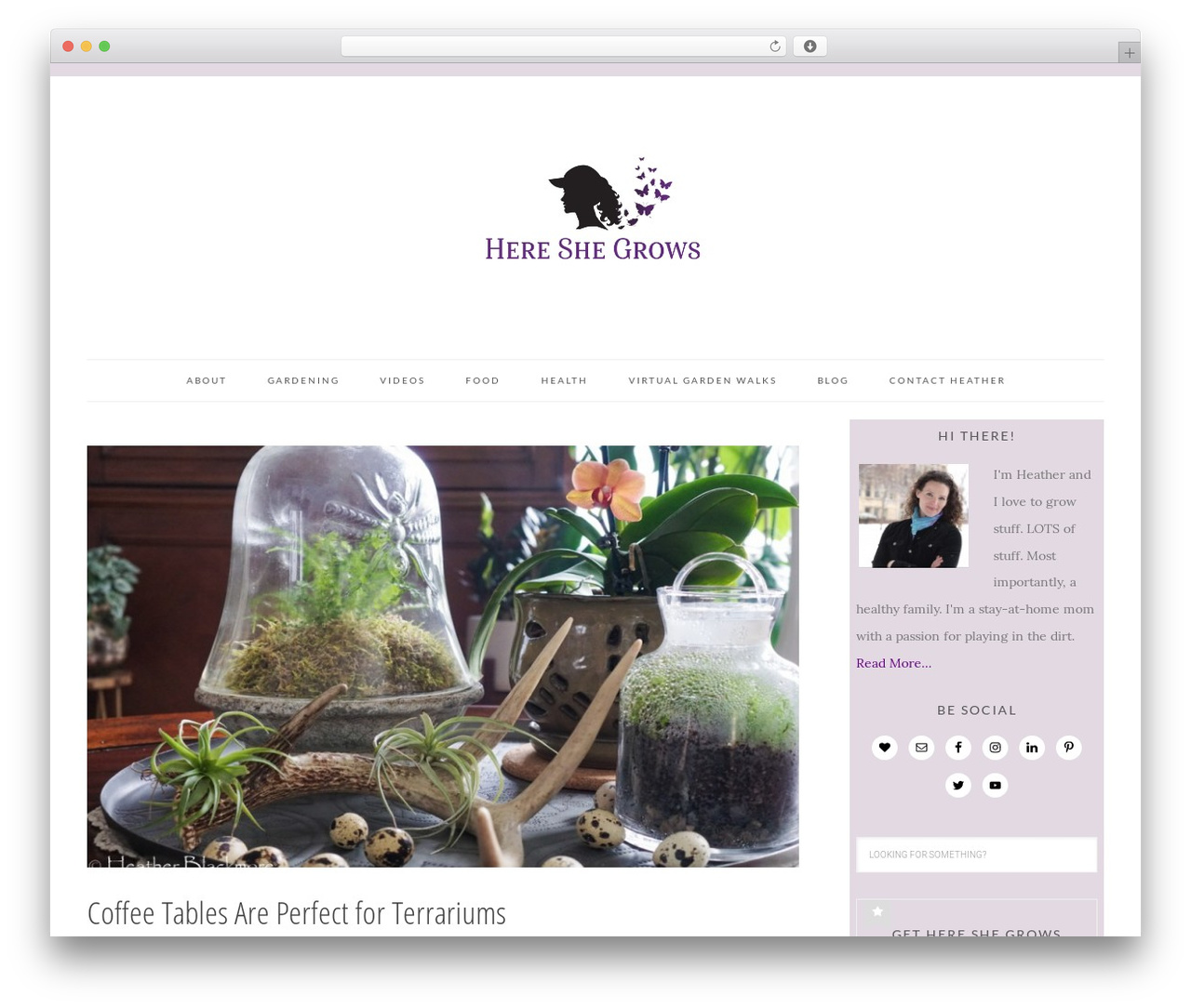 Best WordPress theme Tasteful Theme - hereshegrows.com