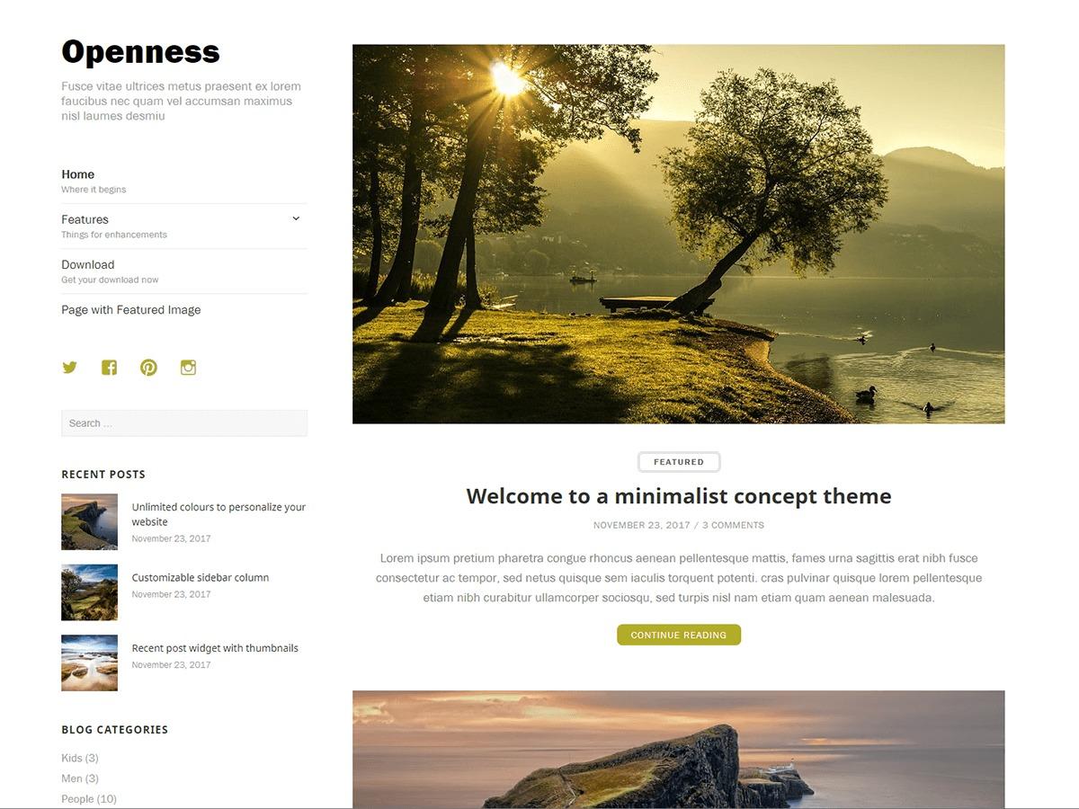 Openness Child WordPress theme image