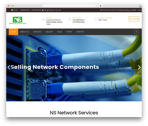 Restore WordPress ecommerce template - network-ss.com