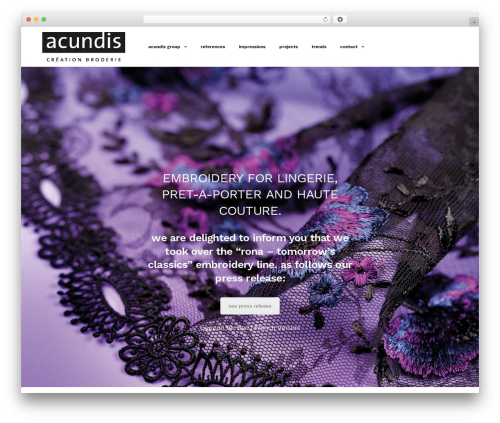 Revolution best WordPress theme - acundis.com