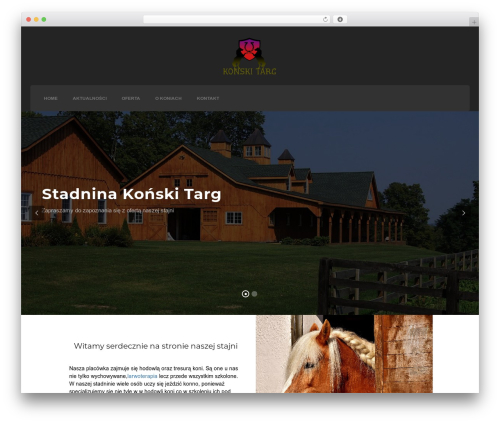 Credo premium WordPress theme - konski-targ.pl