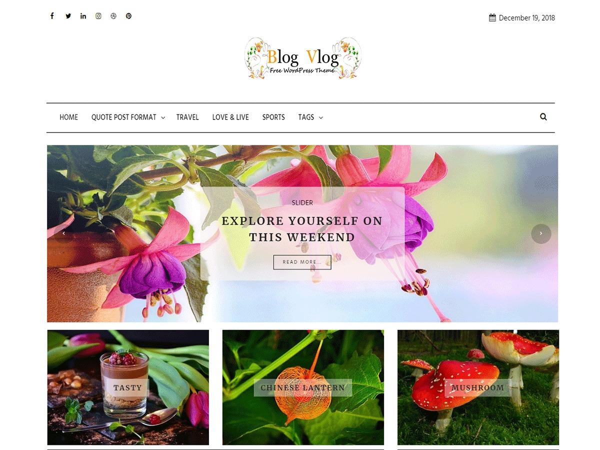 Blog Vlog WordPress blog theme