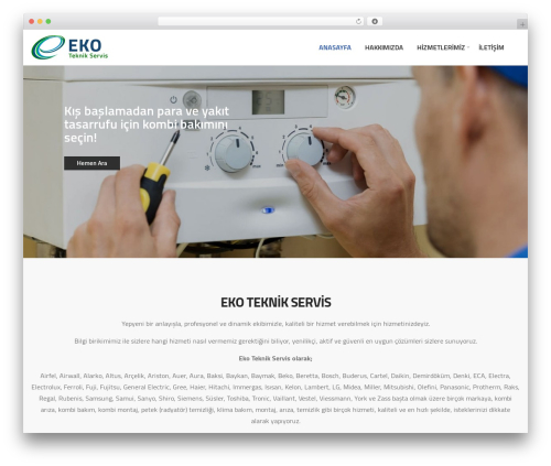 Elise WordPress theme design - kartalkombiservis.com