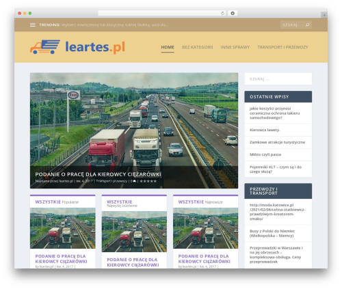 Extra theme WordPress - leartes.pl