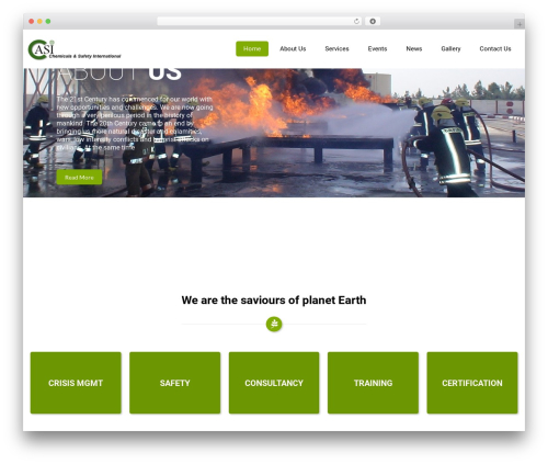 WordPress template Eco Friendly Lite - casiconsultancy.com