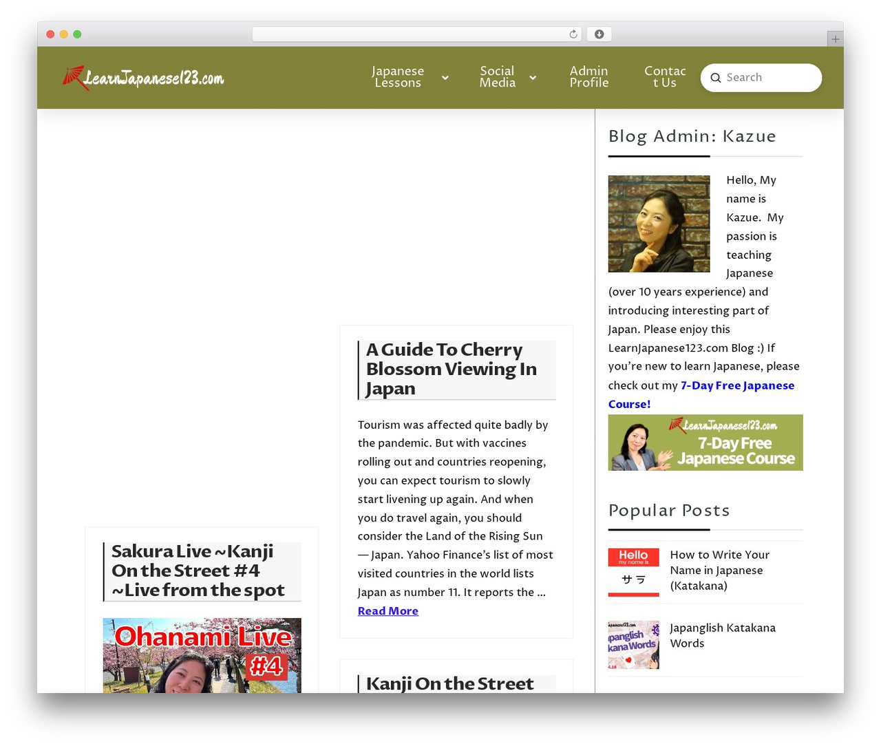 Pro WordPress blog template - learnjapanese123.com