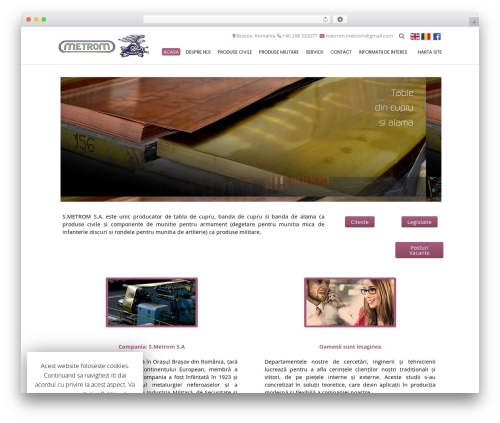 Conica template WordPress free - metrom.ro