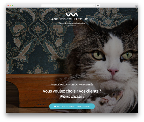 Best WordPress template Revolution - lasouriscourttoujours.fr