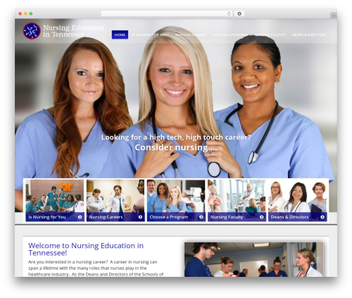 Client Theme template WordPress - nursing-education-tn.org