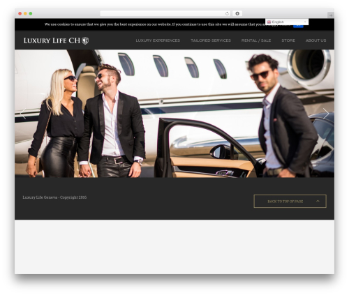 Amber WP template - luxurylife.ch