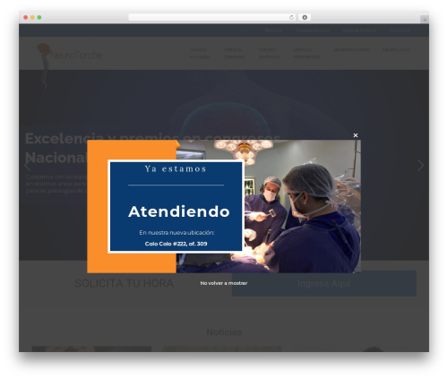 WordPress template Impreza - neurotorche.cl