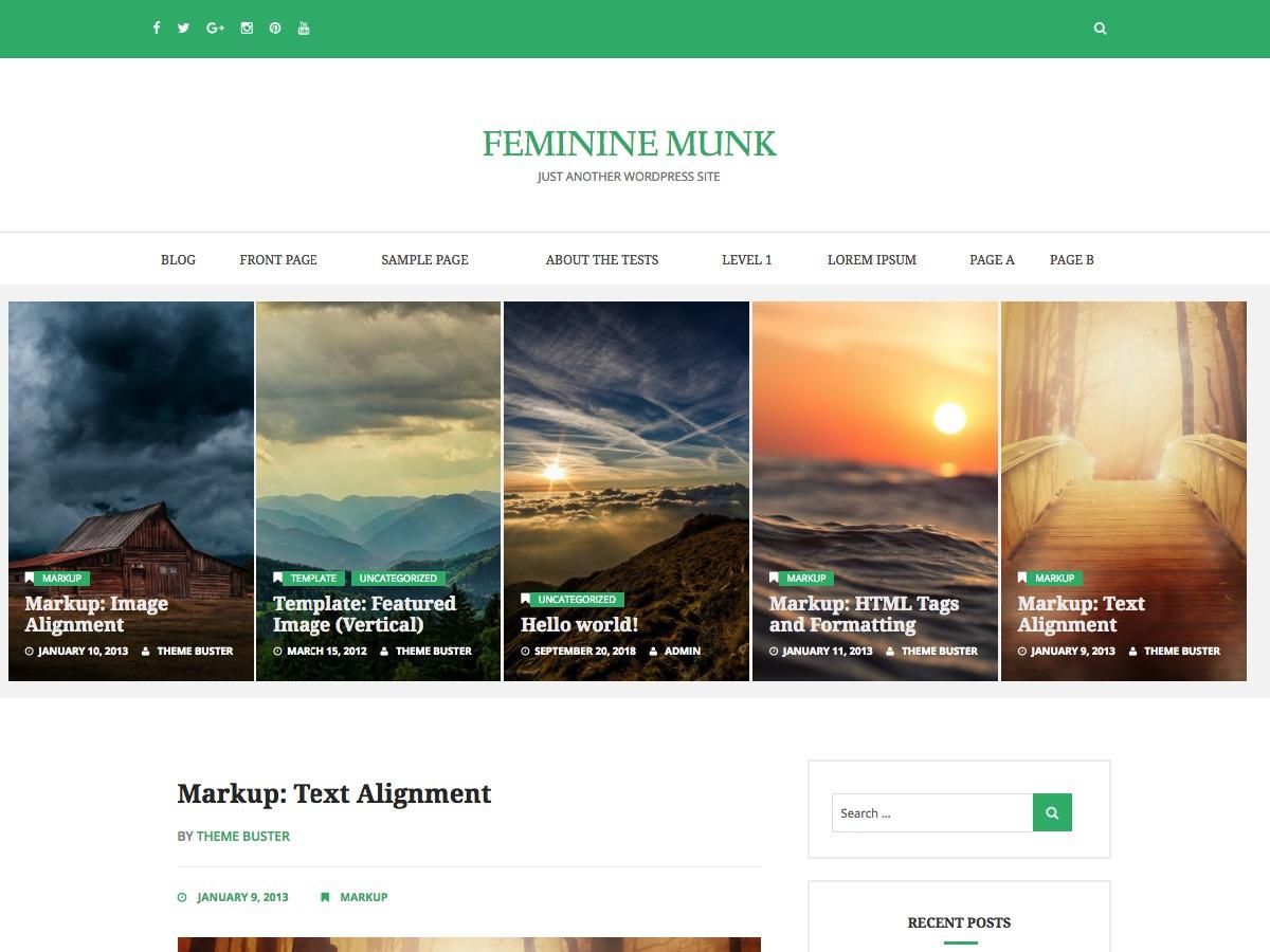 Feminine Munk WordPress blog theme