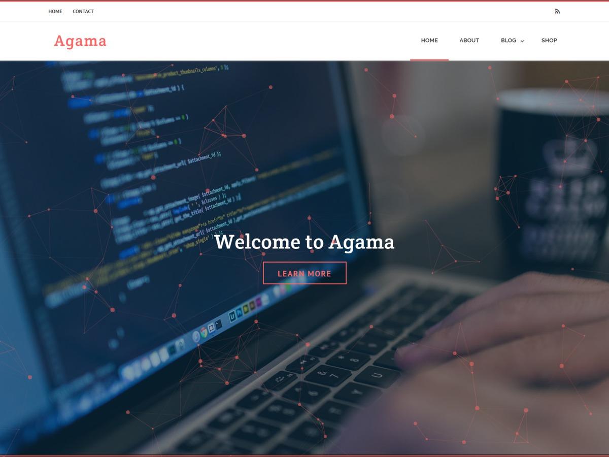 Agama business WordPress theme