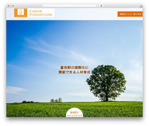 AGENT WordPress theme design - careerfurano.com