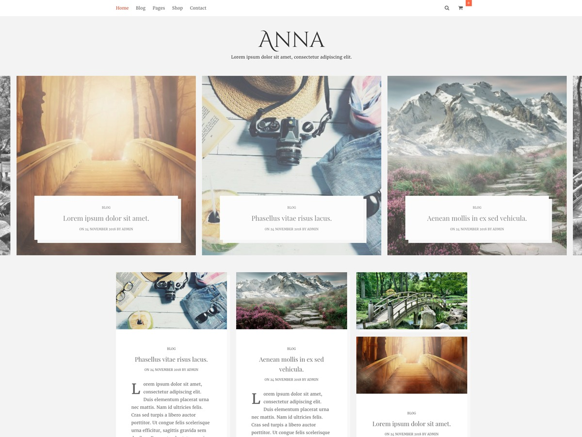 Anna Lite WordPress shopping theme
