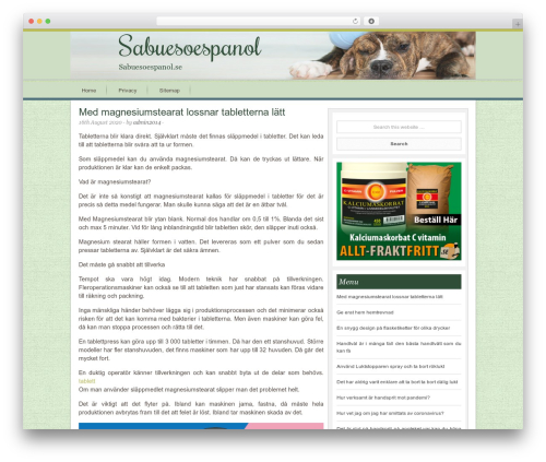 Innovative Child Theme theme WordPress - sabuesoespanol.se