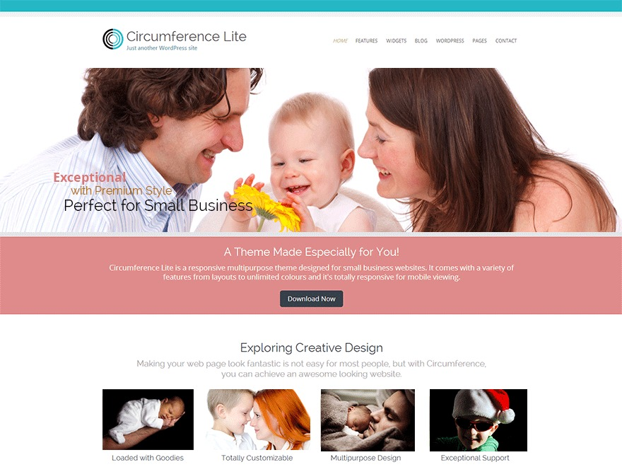Circumference Lite WordPress template for business
