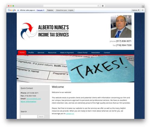 Customized business WordPress theme - albertoincometax.com