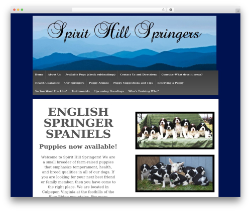 Responsive WordPress page template - spirithillspringers.com