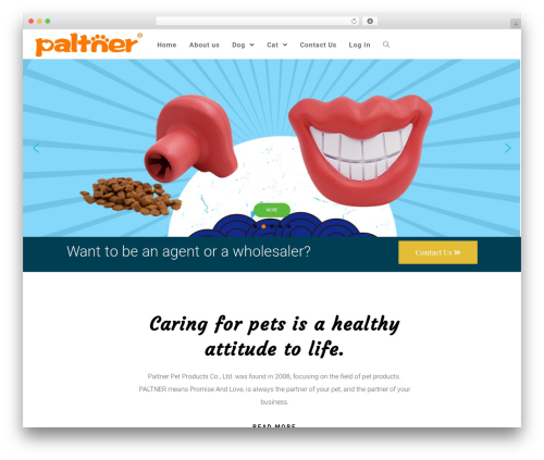 OceanWP best free WordPress theme - paltner.com