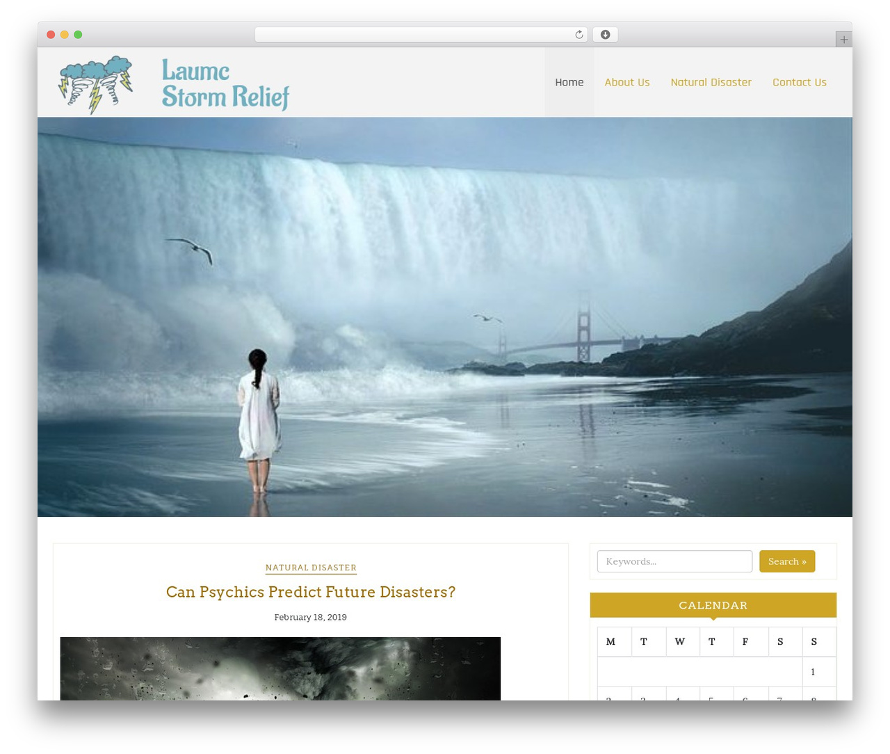 Di Responsive WordPress travel theme - laumcstormrelief.com