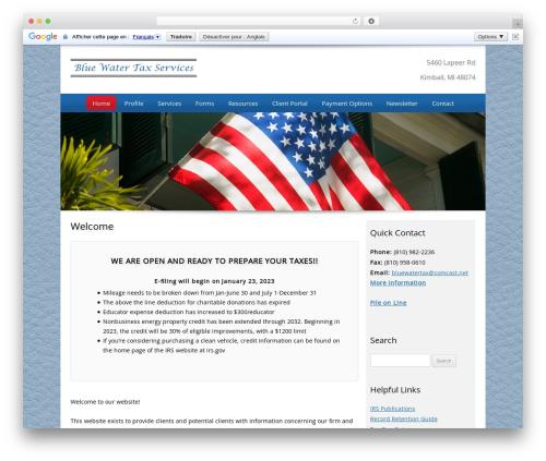 WordPress theme Customized - bluewatertax.net
