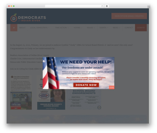 Candidate WP theme - democratsofindianriver.org
