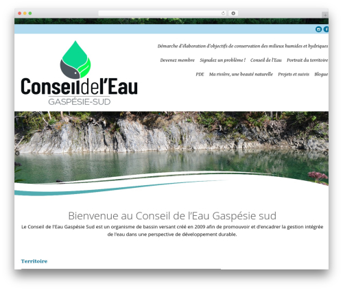Longevity WordPress template free - eaugaspesiesud.org