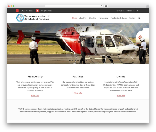 WordPress template THBusiness Pro - taams.org