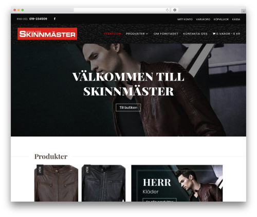 Divi best WordPress template - skinnmaster.se