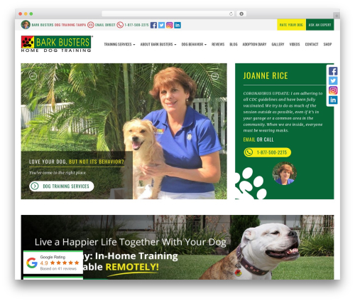 Theme WordPress bigdogbroadcast2 - dogtraining-tampa.com