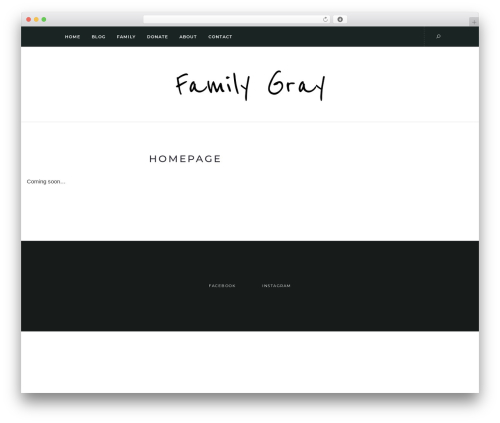Template WordPress Solien - familygray.net