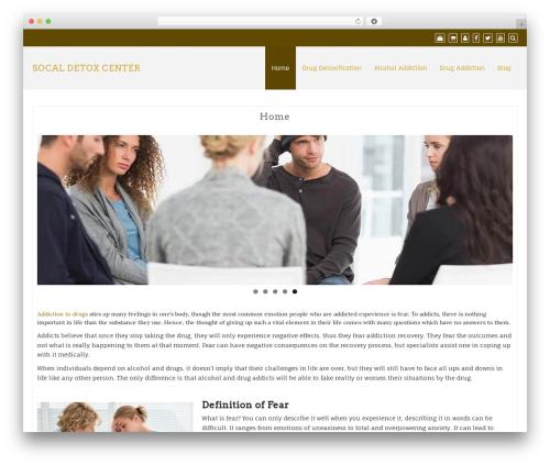 Best WordPress template Creative Agency - socaldetoxcenter.com