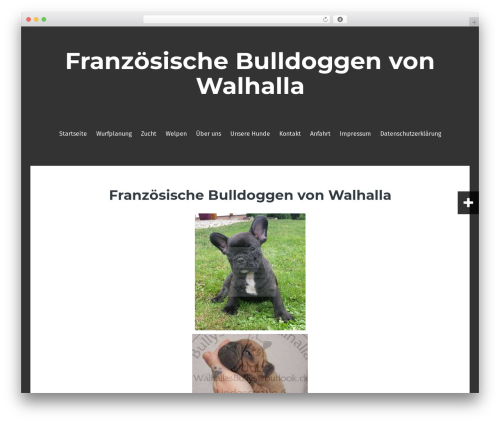 Fara free WP theme - bullys-von-walhalla.de