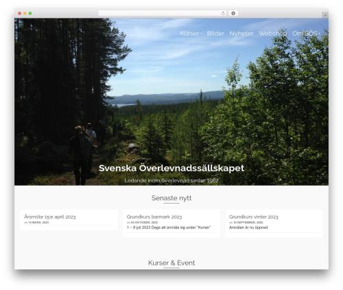 Pinnacle WordPress template free download - overleva.nu