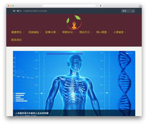 Extra WordPress theme - lingxiuwang.net