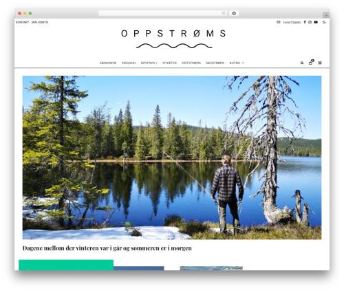Best WordPress template Zeen - opstrms.com