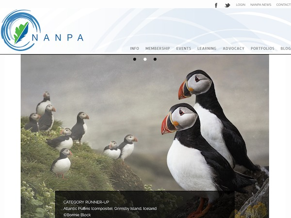 NANPA theme WordPress